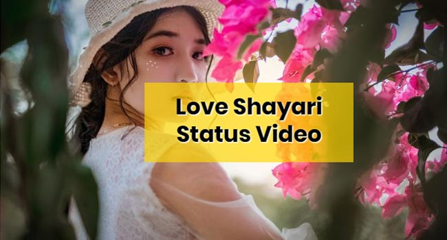 Love Shayari Whatsapp Status Video Download 2020 Love Shayari Status