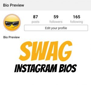 swag-instgarm-bios-quotes-boys-swag-hindi-english