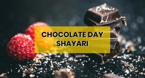 chocolate-day-shayari-hindi-boyfriend-girlfriend