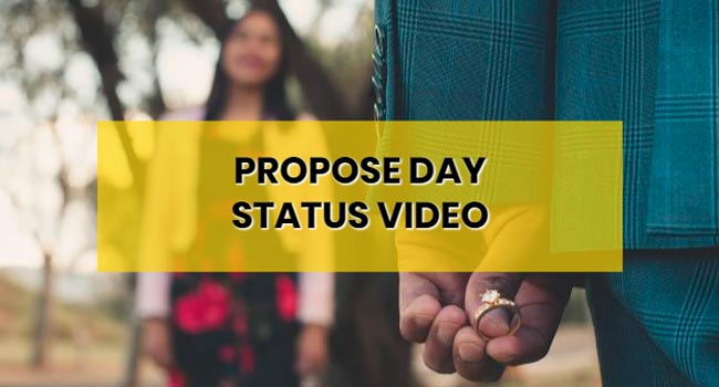 propose-day-whatapp-status-video-download-free