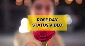 roseday-whatsapp-status-video-download-free