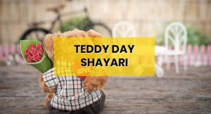 teddy-day-shayari-hindi-boyfriend-girlfriend