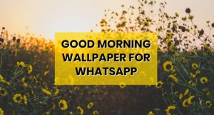 good-morning-whatsapp-wallpaper